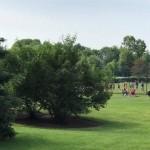 Workingham park